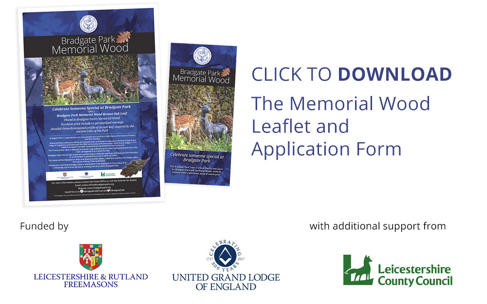 Download the application form to give a Gift in Memory