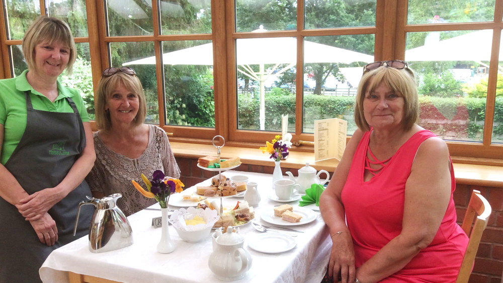 Cream Tea at the Conservatory Tearoom
