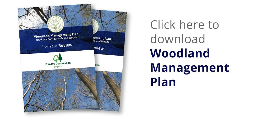 Download the Woodland Management Plan