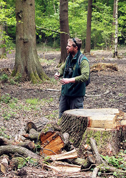Managing Swithland Wood