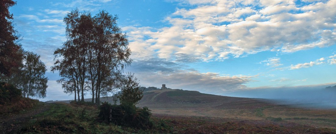 Visit Bradgate Park. Old John from a distance