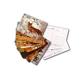 Set of 12 Images of Bradgate as Postcards