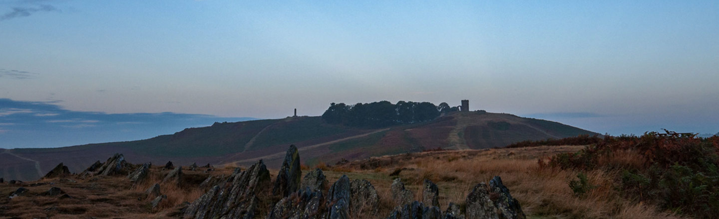 Early Morning In Bradgate Park