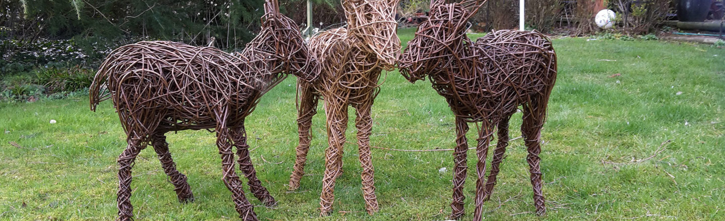 Young Deer Willow Structures